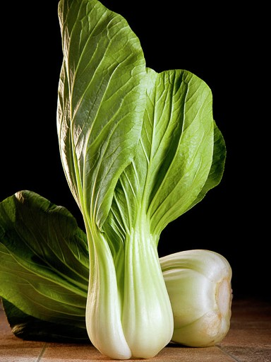 Toy Choy Cabbage