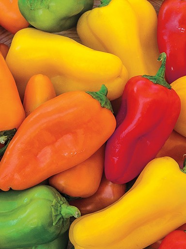 Yum Yum Mix Specialty Sweet Pepper
