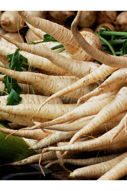 Harris Model Parsnips
