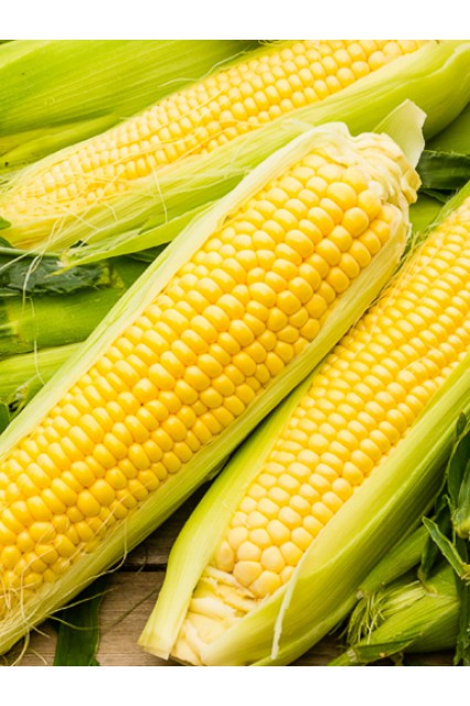 Incredible Yellow Corn