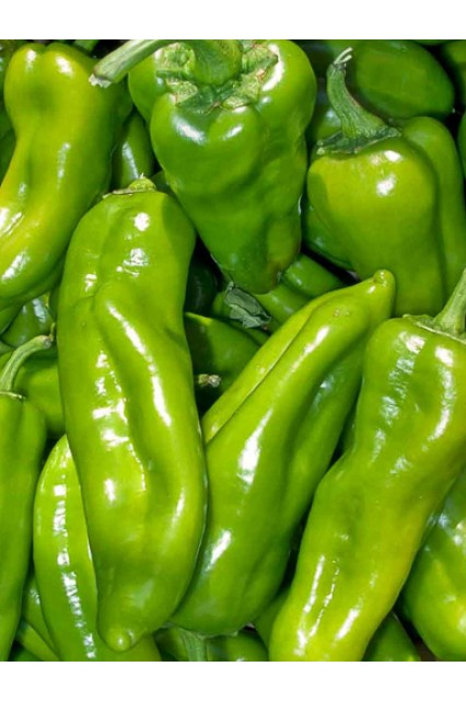 Italian Sweet Frying Pepper