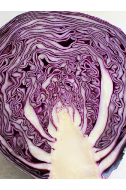 Red Jewel Cabbage