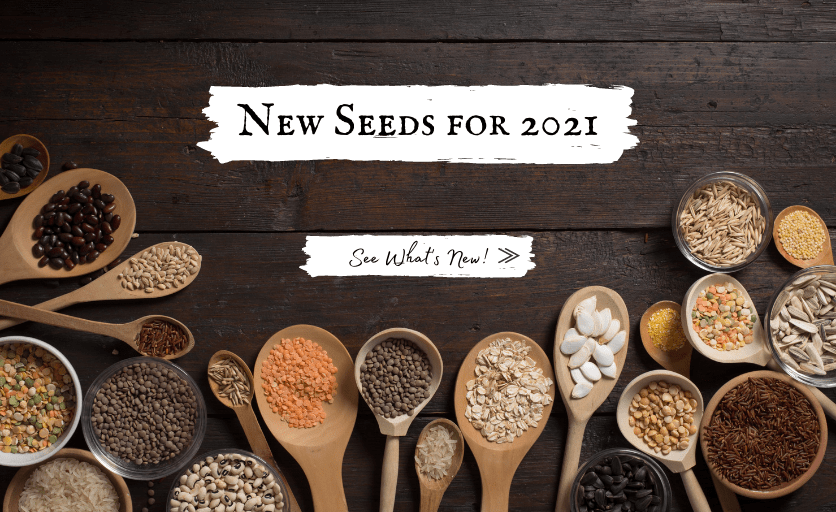 Shop New Vegetable, Flower and Herb Seeds for 2021